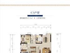 湖南建工东玺台C3户型117.31三房